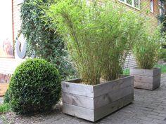 New Der Holzpflanzk bel Greifswald wird aus der Kiefer und Fichte gefertigt Der sechskantige Pflanzk bel bietet viel Platz f r ihr Pflanzprojekt mit u