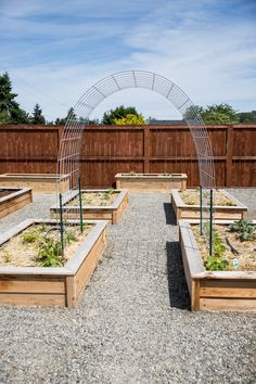 Garden Arch Trellis, Garden Arches, Raised Vegetable Gardens, Raised Bed Gardens, Home Vegetable Garden Design, Planting Raised Garden Beds, Raised Garden Beds Irrigation, Raised Herb Garden, Gardening
