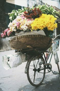 Isn't this photo just wonderful? I adore how many flowers are on this, although I would probably tip over trying to ride this bike!