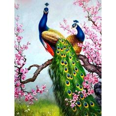 Hand-painted Art Oil Painting Peacock Canvas Decor Wall frame) in Art, Art from Dealers & Resellers, Paintings Peacock Canvas, Peacock Wall Art, Peacock Painting, Peacock Drawing, Peacock Decor, Peacock Colors, Oil Painting Pictures, Pictures To Paint, Print Pictures