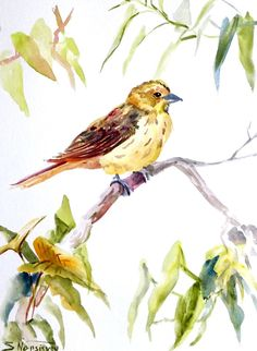 Yellowhammer original watercolor painting by ORIGINALONLY on Etsy, $24.00