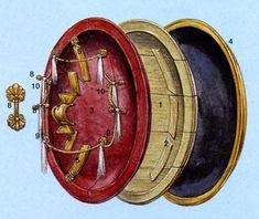 Ancient Greek Aspis (sheild) - a shallow dome Mausoleum At Halicarnassus, Greek Shield, Roman Armor, Greek History, City State, Corinthian, Macedonia, Ancient Greece, Warfare