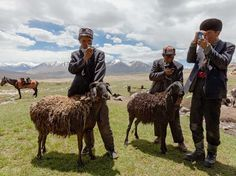 Kyrgyz shepherds standing in a pasture with mobile phones, they charge by solar panels. Although the phones are useless for communication, they are used to listen to music and take pictures. Matthieu Paley, National Geographic
