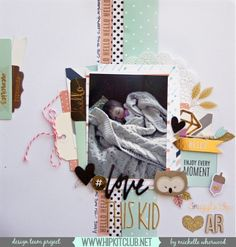Hello  Designer Michelle Whorwood @harbourgal is sharing this awesome LO on our blog  She used our #october2015 kits featuring @pebblesinc Jen Hadfield DIY home collection @pinkpaislee Cedar Lane @simplestories_ wood veneer @americancrafts @dearlizzy #hipkits #hipkitclub #scrapbook #scrapbooklayout