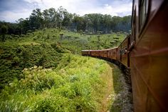 The Most Scenic Train Journeys You Can Experience in Sri Lanka
