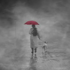 Walking in the Rain by h.koppdelaney, I love this sites galleries...lookin' for just that right picture? Give it a whirl or contribute.