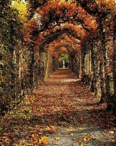 Birr Castle, Offaly, Ireland  Beginning of fall