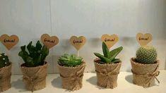Detalles con plantas vivas para invitados de tu boda. #detallesdeboda #boda2020 #boda #barcelona #cactus #regalo Mini Cactus, Cactus Y Suculentas, Wedding Gifts, Christmas Crafts, Planter Pots, Succulents, Bouquet, Place Card Holders, Bujo
