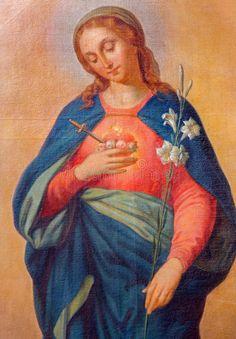 Trnava Slovacchia - cuore della Vergine Maria. Dipinto dell'altare laterale del 1900 di artista sconosciuto.
