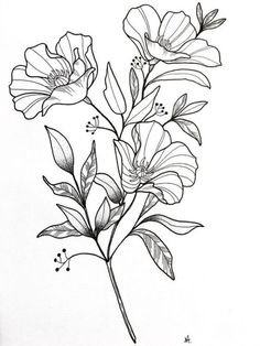 42 Simple and Easy Flower Drawings for Beginners - Cartoon District