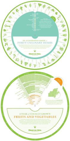 culinary herbs infographic wheel | chew on this