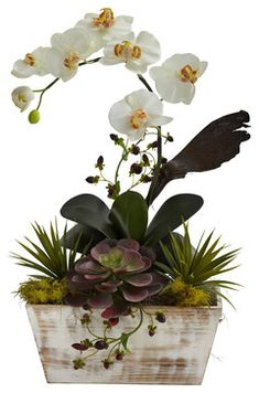 Orchid & Succulent Garden with White Wash Planter contemporary-artificial-flowers