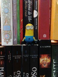 Minions lector