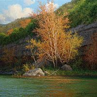 guadalupe river fall oil painting by William Hagerman copyright