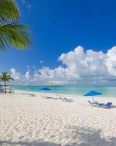 Bahama Beach Club Resort - Great Abaco Island, The Bahamas #Jetsetter