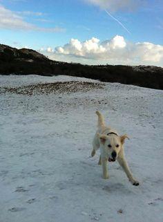 Joehoe sneeuw!!!