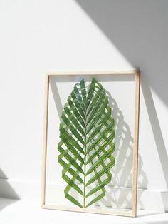Como fazer um quadro com folha de palmeira – PapodeHomem