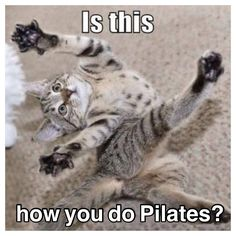 P90X3 Pilates- Lol pretty much how I looked tonigth after that Pilates workout oohhh that move pretzel twist ohhh boy ohh boy you talking about burning booty ok go do p90x3 Pilates x it will impress you it hurts sooo good.