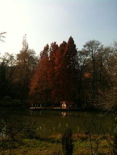 Arboretum - Istanbul