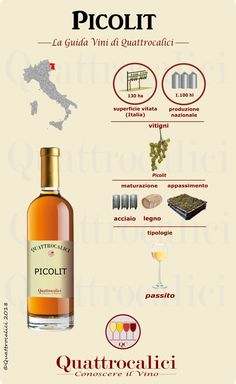 The Different Types of Wine Different Types Of Wine, Wine Tasting Notes, Wine News, Homemade Wine, Wine Guide, Wine Case, Wine Wednesday, Italian Wine, Italian Dishes
