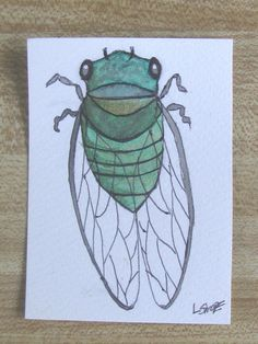 Cicada Insect Art Original Watercolor Painting Middle School Art Projects, School Craft, Watercolor Illustration, Watercolor Paintings, Bug Art, Bug Crafts, Insect Art, Art Lesson Plans, Painting Frames
