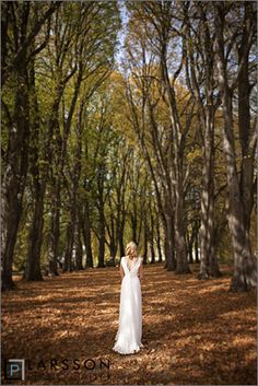 autumn-weddings