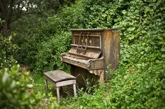 Ghost Piano      An abandoned piano in the woods. Who left it here and how and why? No, it doesn't play