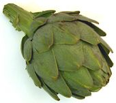 Artichoke Recipes and Cooking Tips: Goodness in a thistle is what you will find within an artichoke. Learn how to prepare an artichoke for cooking, and try such tasty artichoke recipes as Artichoke Fritters, Crab and Artichoke Spaghetti Sauce, Moroccan Stuffed Artichokes, and many more.