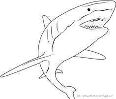 Aneka Gambar Mewarnai - Gambar Mewarnai Ikan Hiu Untuk Anak PAUD dan TK…