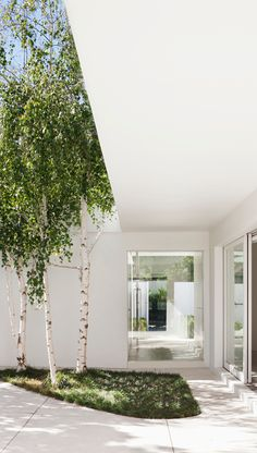 holistic residential architecture and interior design : award winning architects melbourne Residential Architecture, Landscape Architecture, Landscape Design, Garden Design, House Design, Patio Interior, Interior And Exterior, Back Gardens, Outdoor Gardens