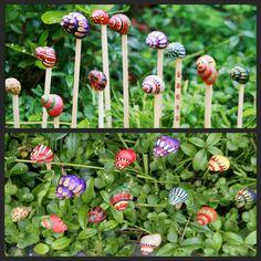 Snail art, slakkenhuis kunst - plantensteker