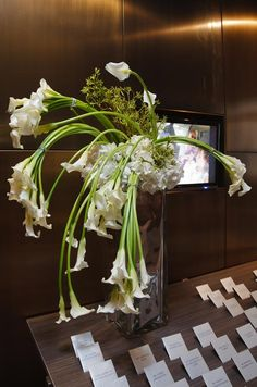 Calla lilies with elegant, long stems overflow from a tall, square glass vase.