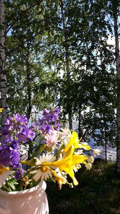 Kesä, kukat ja kesäkukat. #summerflowers