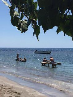 49 Best Treasure Beach Jamaica Images