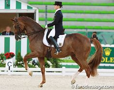 Isabell Werth and Bella Rose in the Grand Prix at the 2014 World Equestrian Games  Photo © Astrid Appels