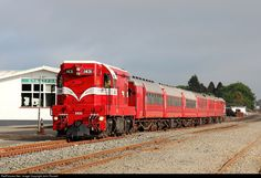RailPictures.Net Photo: 1431 Steam Incorporated EMD G12A (Da) at Stratford, New Zealand by John Russell