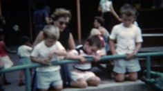 1955: Family watching black bear below at the local zoo. http://www.pond5.com/stock-footage/57670751?ref=StockFilm keywords:family, watch, bears, zoo, below, feed, tame, funny, crazy, dangerous, wacky, safety, chicago, kids, baby, grizzly, old school, 1955, 1950s, 8mm, film, old, times, tv, commercial, home movie, vintage, retro, archive, nostalgia, memories, throwback, Americana, documentary, editorial, historic, preserve, restore, real, classic, era, priceless, generation, timeless…