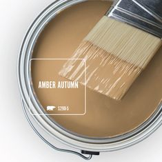 Sherwin Williams Suede Paint Not Only Does It Have A