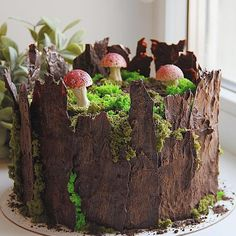 I made a little collection of tree stump cakes and want to share it with you guys. In case you need to make a stump cake 😉 All the cakes… Pretty Cakes, Beautiful Cakes, Amazing Cakes, Moss Cake, Tree Stump Cake, Tree Stumps, Birch Tree Cakes, Mushroom Cake, Fairy Birthday Cake