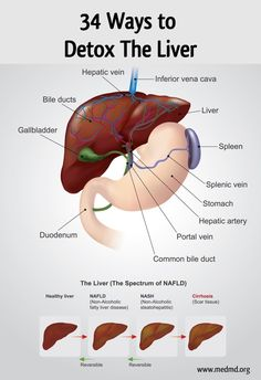 34 Ways to Detox the Liver What's a detox diet? Detox diet is an edema-throwing Natural Liver Detox, Detox Your Liver, Liver Detox Cleanse, Body Detox, Gallbladder Cleanse, Diet Detox, Body Cleanse, Juice Cleanse, Natural Detox Cleanse