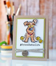 Masterpiece Box! Simon Says Stamp. Tim Holtz Crazy Dogs!