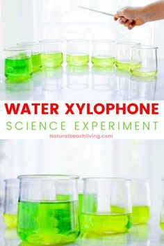Water Experiments For Kids, Science Experiments For Preschoolers, Science Activities For Kids, Water Activities, Science With Toddlers, Kindergarten Science Projects, Science Projects For Kids, Kid Projects, Sound Science