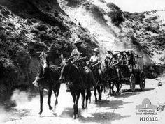 Dardanelles Area, Turkey. 1915. A British Army mule drawn ambulance wagon passing through a Gully Ravine.     Australian War Memorial, Canberra (Australia).