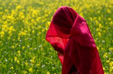 Indian farmer walking thru mustard field, Bisothi Village India   AP Photo/ Rajesh Kumar Singh