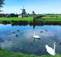 WEEKEND IN DE ZAANSTREEK MET KINDEREN! Holland, Camping, The Nederlands, Campsite, The Netherlands, Outdoor Camping, Campers, Netherlands