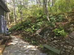 Jappalachia Blue backyard,  #stonewall #ferns #japaneselantern #hostas