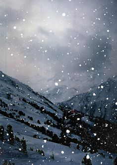 snowing ~ great photo