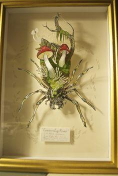 Alison Wonderland: SPIDDER
