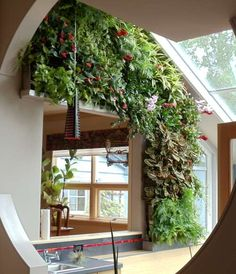 Green walls, Vertical Landscaping, Vertical Gardens, Living Walls – whatever you want to call them, they are the hottest thing in interior landscaping.