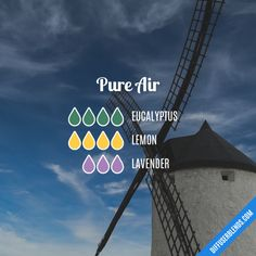 Pure Air - Essential Oil Diffuser Blend